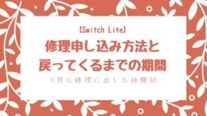 SwitchLiteがソフトを読み込めない!修理申請方法と発送~家に戻るまでの体験記